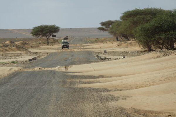 Afrika 2019-2020 0693