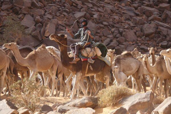Zentral-Mauretanien 2020