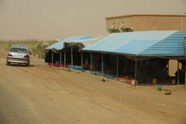 Süd-Mauretanien 2020